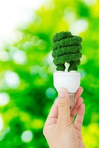eco-energy-concept